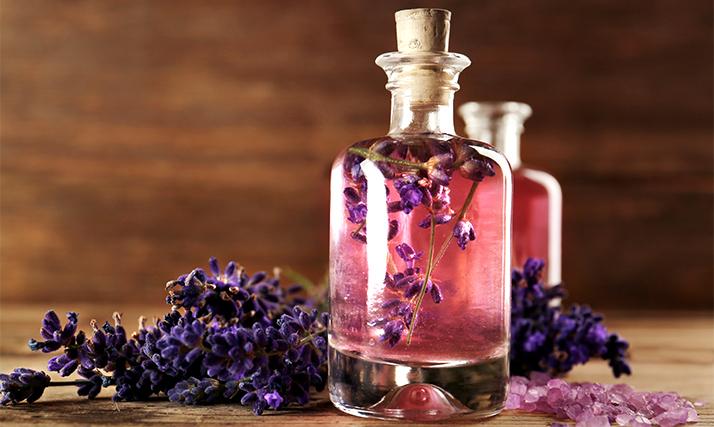TOP parfemi od lavande